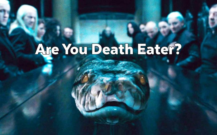 Which Harry Potter Villain Are You? Take This Harry Potter