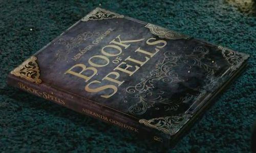 Who's Your Hogwarts Boyfriend? - image BookofSpellsMirandaGoshawk on https://potterhood.com