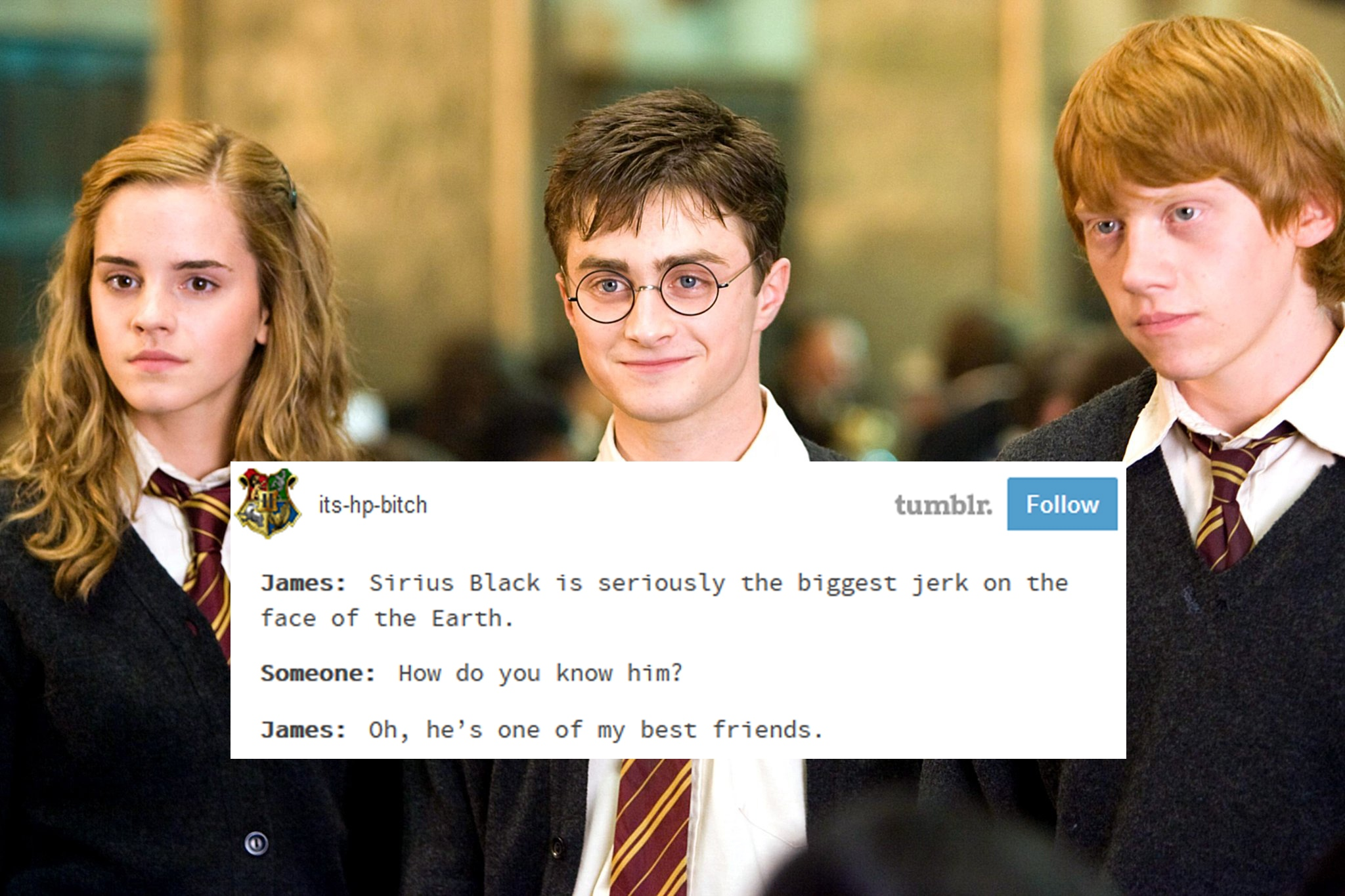 15 Harry Potter Memes That Will Make You Laugh Then Cry